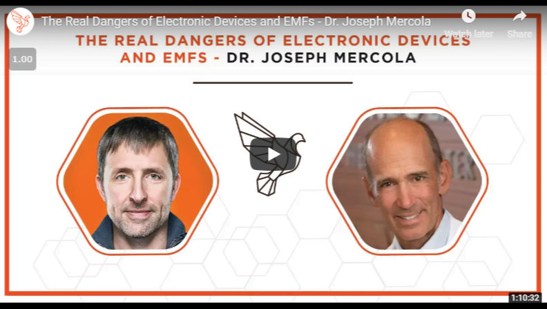 Informative Bulletproof Dr. Joseph Mercola Interview The Real Dangers of Electronic Devices and EMFs - Official US Importer Wholesaler